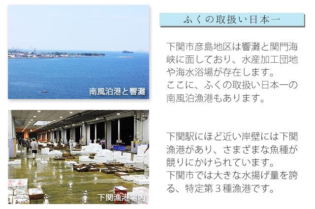 下関漁港と、南風泊漁港